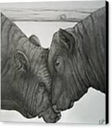 Bullheaded Canvas Print by Adrienne Giljam