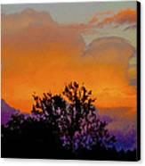 Burning Bush Canvas Print by Robert J Andler
