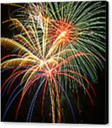 Bursting In Air Canvas Print