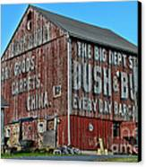 Bush And Bull Roadside Barn Canvas Print