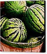 Bushel Full Of Melons Canvas Print