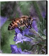 Busy As A Bee Canvas Print by Jeff Swanson