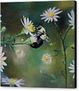 Busy Bee - Nature Scene Canvas Print by Prashant Shah