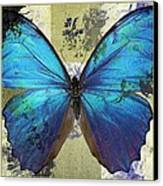 Butterfly Art - S01bfr02 Canvas Print by Variance Collections