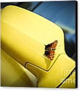 Butterfly On Sports Car Mirror Canvas Print by Elena Elisseeva