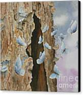 Butterfly Tree Canvas Print by Paula Marsh