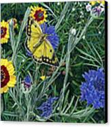 Butterfly Wildflowers Spring Time Garden Floral Oil Painting Green Yellow Canvas Print