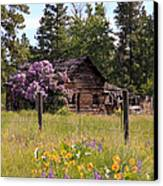 Cabin And Wildflowers Canvas Print