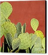 Cactus Against Orange Wall Canvas Print