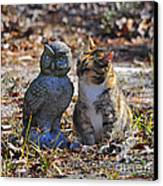 Calico Cat And Obtuse Owl Canvas Print by Al Powell Photography USA
