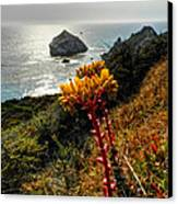 California - Big Sur 006 Canvas Print by Lance Vaughn