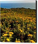 California - Big Sur 007 Canvas Print by Lance Vaughn