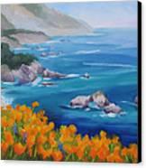 California Poppies Big Sur Canvas Print