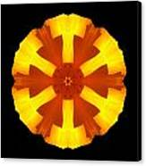 California Poppy Flower Mandala Canvas Print by David J Bookbinder