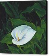 Calla Lily In The Garden Of Diego And Frida Canvas Print
