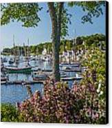 Camden Harbor Spring Canvas Print by Susan Cole Kelly