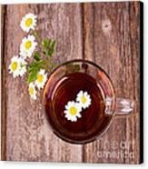 Camomile Tea Canvas Print by Jane Rix