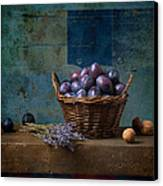 Campagnard - Rustic - S01obv Canvas Print by Variance Collections