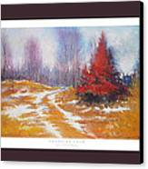 Canadian Calm Canvas Print