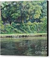 Cane River Canvas Print