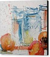 Canning Peaches Canvas Print by Sandra Strohschein