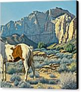 Canyon Country Paints Canvas Print by Paul Krapf