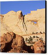 Capitol Reef National Park, Utah Canvas Print by Mark Newman