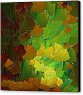Capixart Abstract 80 Canvas Print by Chris Axford
