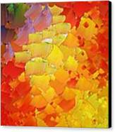 Capixart Abstract 87 Canvas Print