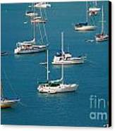 Caribbean Sailboats Canvas Print by Amy Cicconi