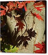 Carolina Autumn Canvas Print