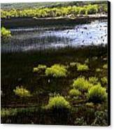 Carretera Austral River Canvas Print by Arie Arik Chen