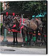 Carriage Horses At City Market Canvas Print by Linda Ryan
