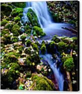 Cascade Creek Canvas Print