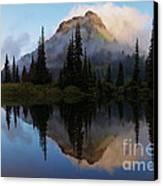 Cascade Mirror Canvas Print by Mike  Dawson