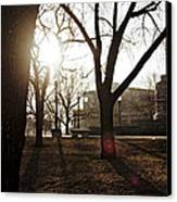 Casting A Shadow Canvas Print by Eugene Bergeron