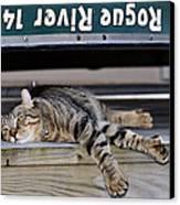 Cat And A Canoe Canvas Print by Susan Leggett