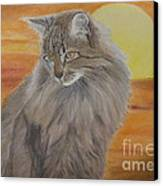 Cat And Sunset  Canvas Print