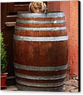 Cat Guarding A Wine Barrel In Alsace Canvas Print by Greg Matchick