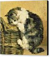 Cat With A Basket Canvas Print