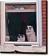 Cats On A Sill Canvas Print by Randi Shenkman