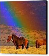 Caught In A Rainbow  Canvas Print by Jeanne  Bencich-Nations