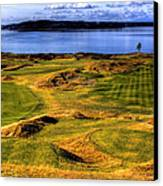 Chambers Bay Lone Tree Canvas Print
