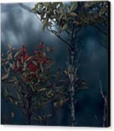 Change Of Season Canvas Print by Bonnie Bruno