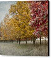 Changing Of The Seasons Canvas Print by Jeff Swanson