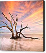 Charleston Sc Sunset Folly Beach Trees - The Calm Canvas Print