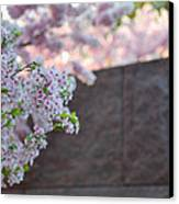 Cherry Blossoms 2013 - 066 Canvas Print by Metro DC Photography
