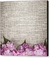 Cherry Blossoms On Linen  Canvas Print