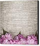 Cherry Blossoms On Linen  Canvas Print by Elena Elisseeva
