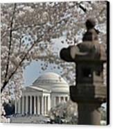 Cherry Blossoms With Jefferson Memorial - Washington Dc - 011326 Canvas Print